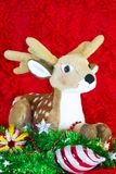 驯鹿和绿色树在红色背景 圣诞节快活的新年度 免版税库存图片
