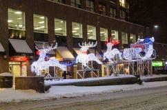驯鹿和雪橇在白色圣诞节期间在多伦多 库存图片