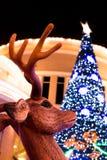 驯鹿和Xmas树 免版税库存照片