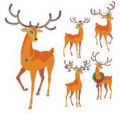 驯鹿圣诞节象 优美的鹿汇集 库存例证