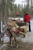 驯鹿在圣诞老人Claud村庄,拉普兰 库存照片