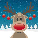 驯鹿红色鼻子和圣诞节球 免版税库存图片