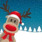驯鹿红色鼻子圣诞老人帽子 免版税库存图片