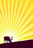 驯鹿阳光日落 向量例证
