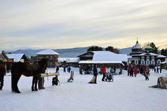 驱动乐趣爬犁冬天 活动在木建筑学博物馆在露天下 俄罗斯,西伯利亚, Taltsy伊尔库次克地区 免版税库存照片