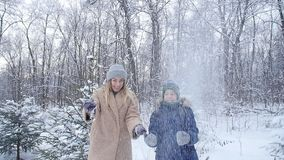 驱动乐趣爬犁冬天 愉快的母亲和儿子投掷的雪在天空中在冬天森林或公园里 影视素材