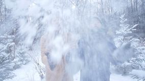 驱动乐趣爬犁冬天 愉快的母亲和儿子投掷的雪在天空中在冬天森林或公园里 股票录像