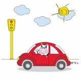 驱动红色的汽车母牛 向量例证