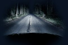 驱动通过森林的晚上 免版税库存图片