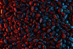 驱散背景的咖啡豆阐明与氖 库存照片