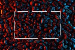 驱散背景的咖啡豆阐明与氖 免版税图库摄影