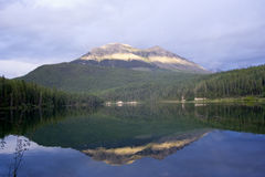 驼鹿属中断在彩虹的黎明湖 库存照片