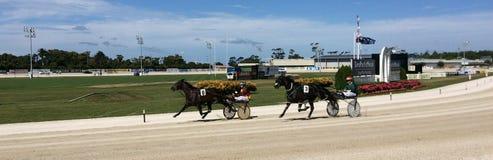 轻驾车赛在亚历山德拉公园跑道在奥克兰新西兰 库存图片