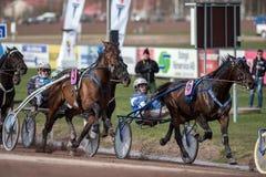 轻驾车赛在瑞典 免版税库存图片