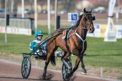 轻驾车赛在瑞典 免版税库存照片