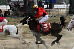 轻驾车赛用马舍入三轮的跑马 免版税库存照片