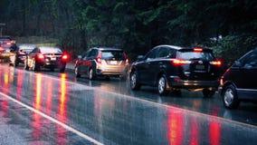 驾车通过公园在雨中 影视素材