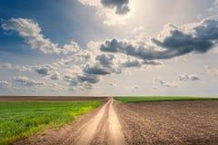 驾驶在一条空的土路晴天 免版税库存照片