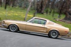 驾驶在乡下公路的Ford Mustang 库存图片
