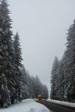 驾驶在冬天路的卡车 库存图片