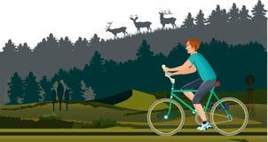 驾驶在木路的骑自行车者 免版税库存照片