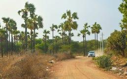 驾驶在老Bagan的红色多灰尘的路的卡车 免版税库存图片