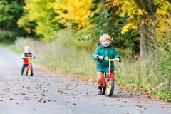 驾驶在自行车的活跃双男孩在秋天森林里 免版税库存图片