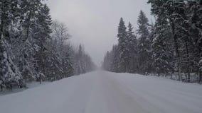 驾驶在雪风暴的一条冬天森林公路 汽车背面图 影视素材