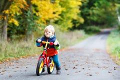 驾驶在他的自行车的逗人喜爱的活跃小男孩在秋天森林里 免版税图库摄影