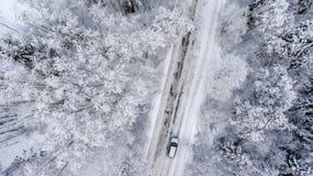 驾驶在slipery柏油路的白色多雪的常青森林里的Suv 从寄生虫的鸟瞰图 免版税库存照片