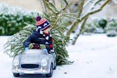 驾驶有圣诞树的滑稽的矮小的微笑的孩子男孩玩具汽车 愉快的孩子以冬天时尚给被砍成穿衣的带来 图库摄影