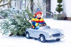 驾驶有圣诞树的滑稽的矮小的微笑的孩子男孩玩具汽车 库存图片