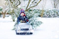 驾驶有圣诞树的滑稽的矮小的微笑的孩子男孩玩具汽车 免版税图库摄影
