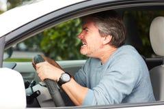 驾驶汽车的恼怒的南 免版税库存照片