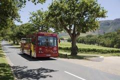 驾驶沿着一个葡萄园的Tourbus在Constantia在开普敦南部非洲附近 库存图片
