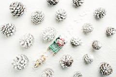 驾驶爬犁的圣诞老人在雪盖的森林里 Chri 免版税图库摄影