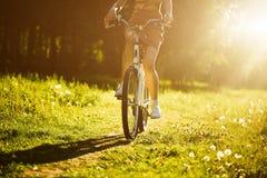 驾驶自行车的滑稽的女孩室外 晴朗的夏天生活方式概念 礼服和帽子的妇女在领域用蒲公英 免版税库存照片