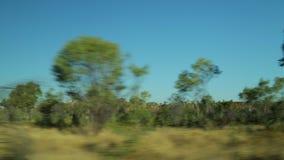 驾驶过去树和丛生与红色岩石 股票视频
