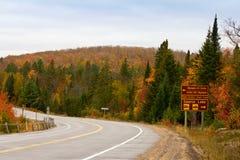 阿尔根金族在秋天的公园路 图库摄影