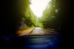 驾驶通过森林被喝的视觉 库存图片