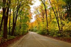 驾驶通过秋季森林 图库摄影