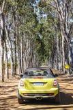 驾驶通过葡萄园在玛格丽特河 免版税图库摄影