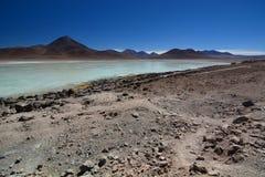 骆马 安地斯山的avaroa eduardo动物区系国家储备 流星锤 图库摄影