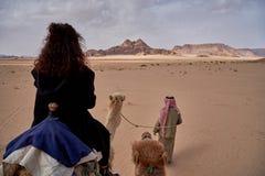 骆驼乘驾在瓦地伦沙漠在约旦 POV,文本的空间 库存照片