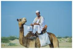 骆驼乘驾 免版税库存照片