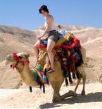 骆驼停止的女孩以色列海运年轻人 免版税库存照片