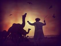 骆驼剪影在普斯赫卡尔, Mela 免版税图库摄影