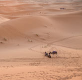 骆驼和汽车,过去,远期 免版税库存照片