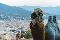 骆驼图在城市被弄脏的背景  图库摄影