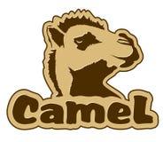 骆驼图标 免版税库存照片